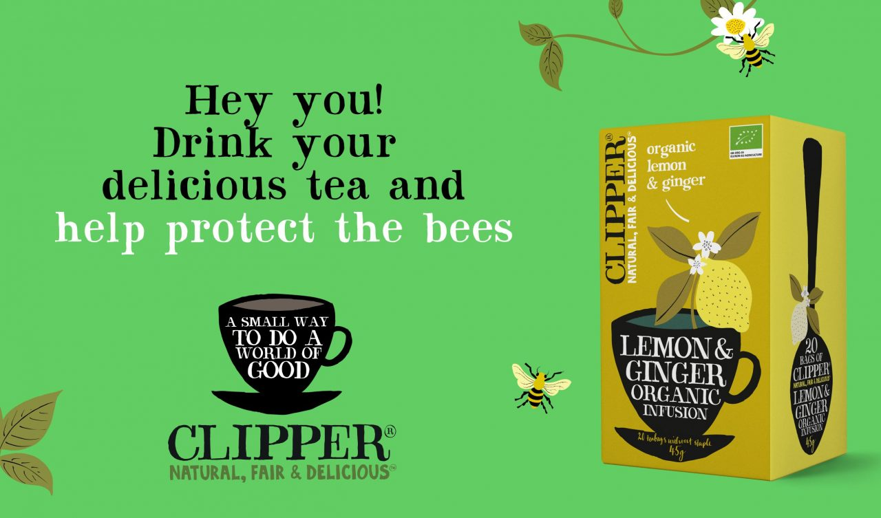 protect the bees